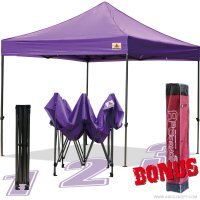 AbcCanopy 10x10 King Kong Purple Canopy Instant Shelter Outdor Party Tent Gazebo with carry bag